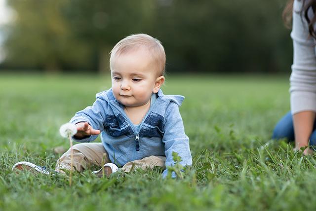 bebé jugando con el pasto y diente de león