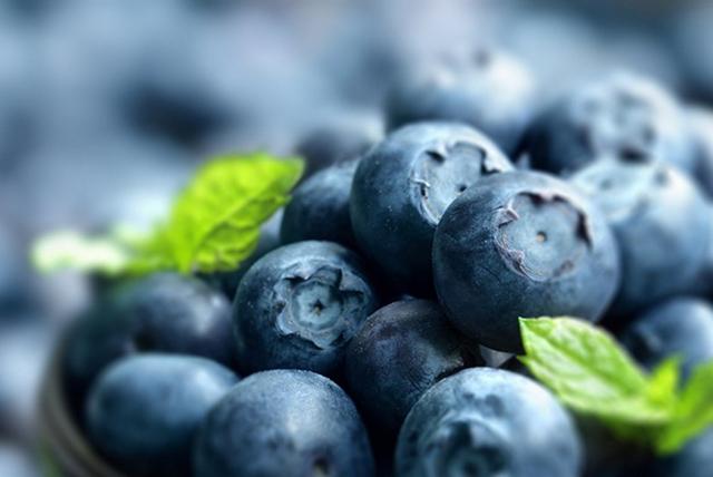 close-up de moras (blueberries)